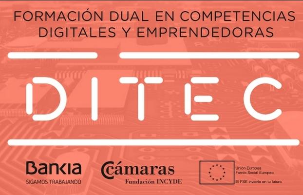Proyecto DITEC